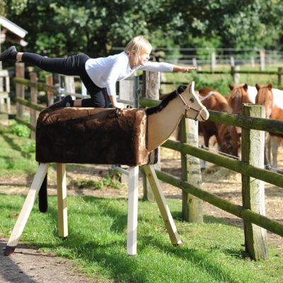 holzpferd-spielholzpferd-funny-horses-maxi